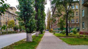 Сведения о доходах в ФСС РФ