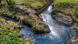 Ничтожность договора аренды земли водного фонда